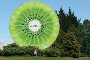 kiwi 360
