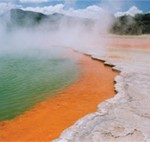 Rotorua Thermal Pool
