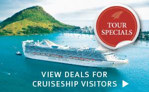 cruiseship in New Zealand image