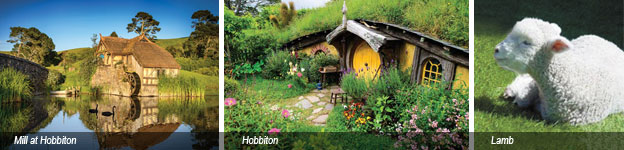 hobbiton tour images and lamb
