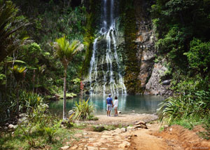 nz waterfall