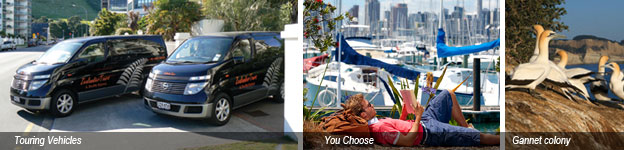 design your own tour Auckland montage
