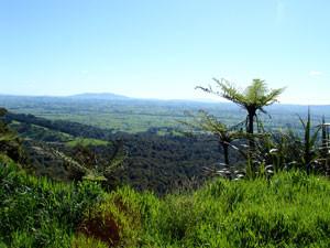 kaimai ranges