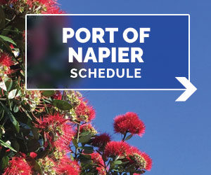 napier schedule