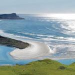 #DOPHD – Dunedin Otago Peninsula Half Day