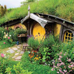 #LOTRFD Lord of the Rings Hobbiton Movie Set Tour