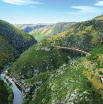 #DTEPSC – Taieri Gorge Express & Otago Peninsula Sights