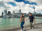 #ACSHDT Auckland Tours – Half Day City Highlights