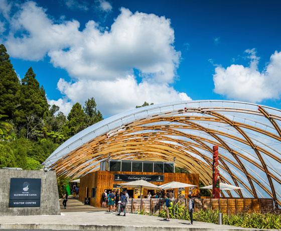 Waitomo Glow-worm Caves Tour- Tauranga | Zealandier Tours