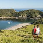 #BAY01 – Bay of Islands Shore Excursion